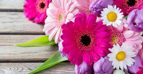 Любимые цветы раскроют вкусы