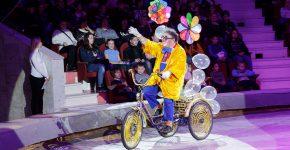 Не идти в цирк